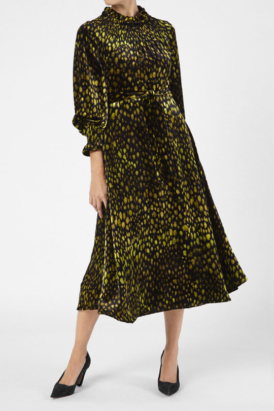 Richford Dress Multicoloured Print Velvet